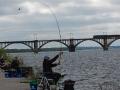 Фотоотчет с ЧДнО по ловле рыбы фидером