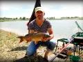 Фотоотчет с Летнего Кубка ЗРК по ловле рыбы фидерной и поплавочной удочкой