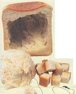 рыбалка на белый хлеб