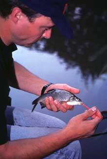 извлечение крючок рыбалка