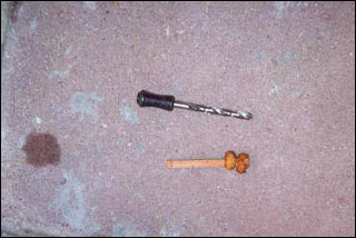 Пошаговая инструкция ловли на тигровые орешки