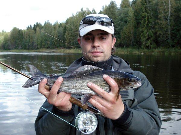 рыба рыболов википедия
